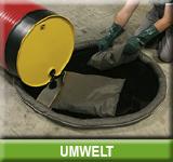 BASICs_Umwelt